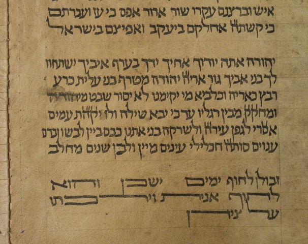 A segment from a scroll identified by Italian professor Mauro Perani as the world's oldest complete scroll of the Torah is seen in Bologna, central Italy, in this handout picture released to Reuters by Mauro Perani on May 29, 2013. — Reuters Photo