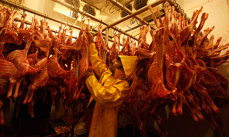 A worker hangs mutton in a cold storage unit in the Saylani Welfare Trust office building in Karachi, June 5, 2013.
