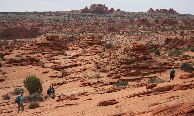 Hikers walking on rocky terrain for a 3-mile trip to The Wave rock formation in the Vermilion Cliffs National Monument.