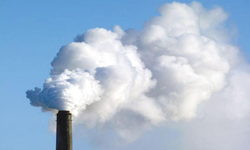 Globally, coal-fired power plants are considered amongst the worst environmental polluters.  — File Photo