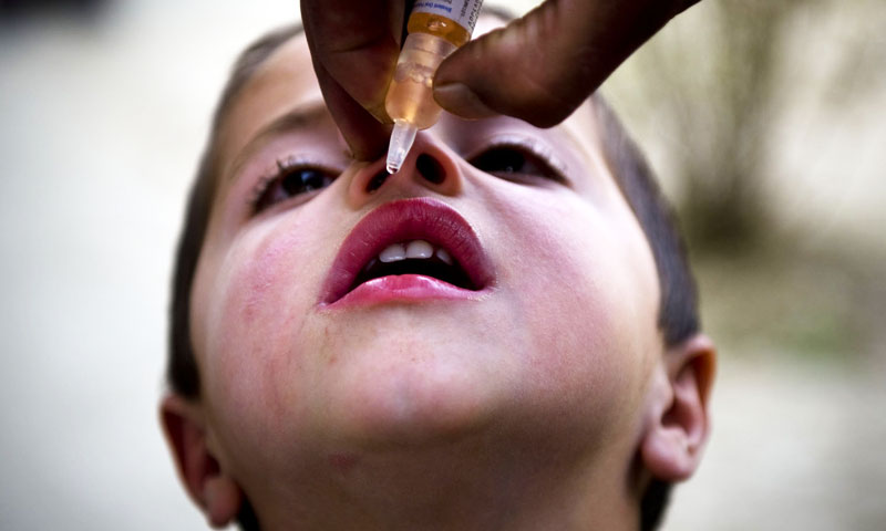 A two-day meeting of Technical Advisory Group (TAG) held in Islamabad in November last year observed that Pakistan could eliminate polio despite recording 83 cases in 2013 because the root cause of the problem was identified. — File photo