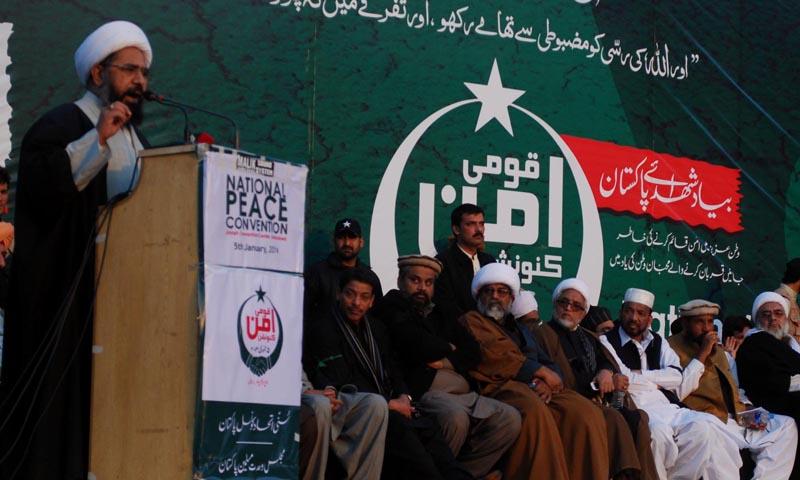 Majlis Wahdat-ul-Muslimeen (MWM) Deputy Secretary General Allama Amin Shahidi, addressing during National Peace Conference at D Chowk. — Photo by INP