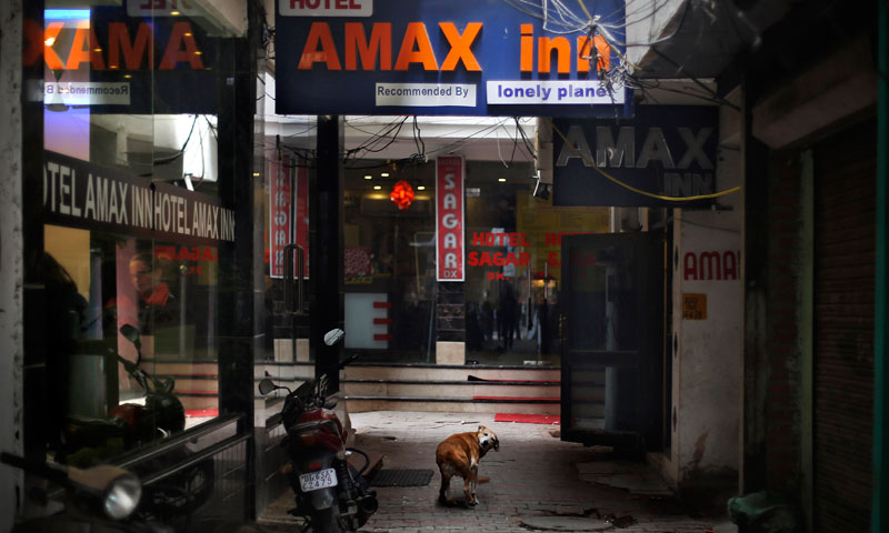 A dog stands outside Hotel Amax Inn in New Delhi Wednesday, Jan 15, 2014. — Photo by AP