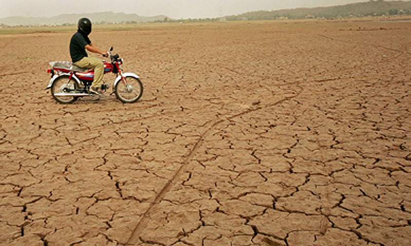 Food security should be the top priority for Pakistan in the climate change scenario. -Photo by Reuters