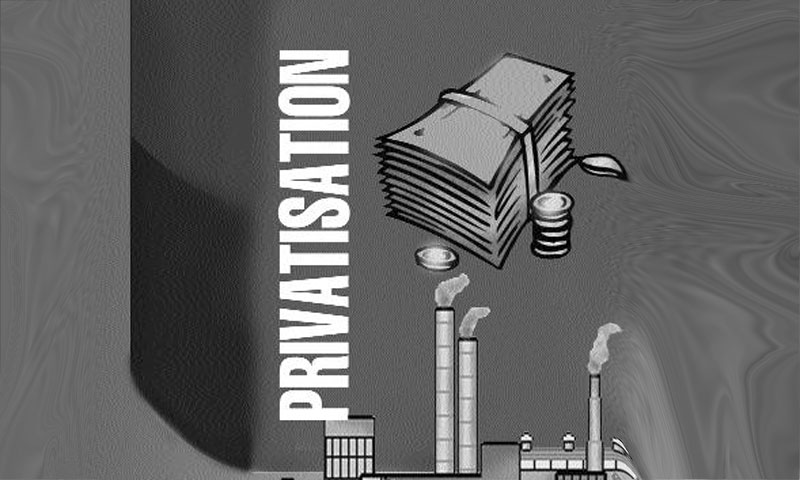 privatisation in indian economy