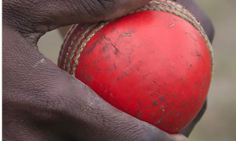 Cork Ball Cricket Bat: Immigrants Fueling A US Boom In Cricket