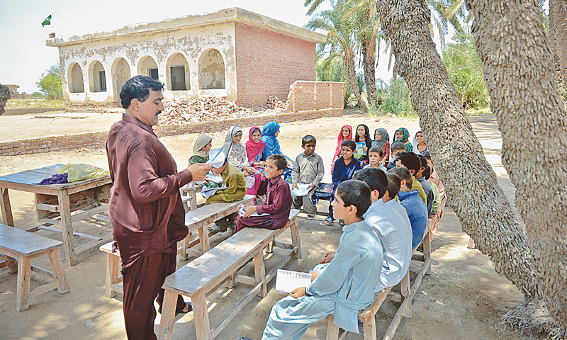 A teacher and his students study under date palms in Jan Mohammad Brohi Goth where the only school building cannot be used as its structure is feared dangerous.—Photo by Fahim Siddiqi / White Star
