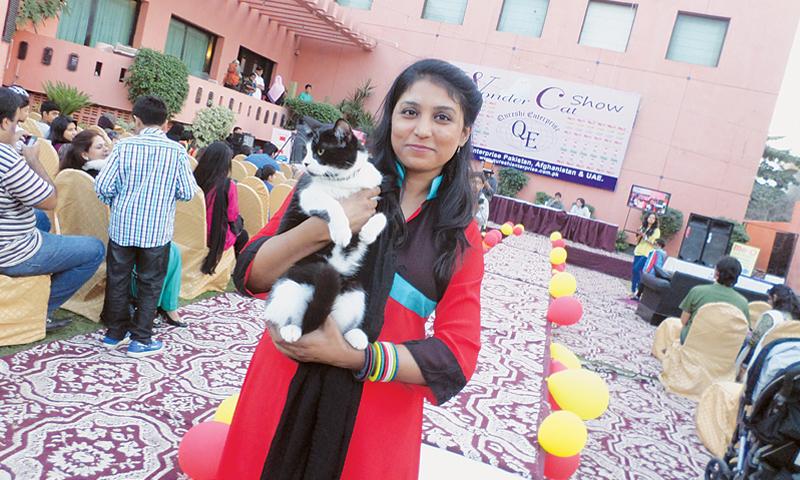 Persian cats doctor in karachi