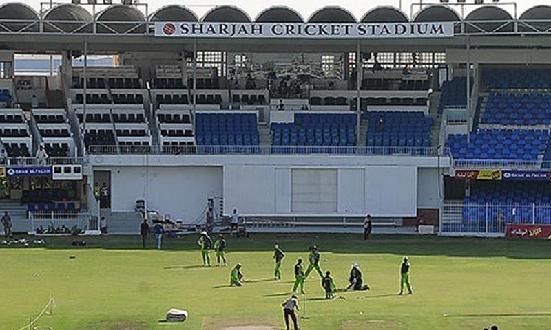 Pakistan, Aussies, Kiwis achieve favourable results in UAE