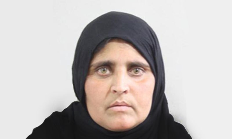 Sharbat Bibi as pictured on her Nadra form - Nadra photo