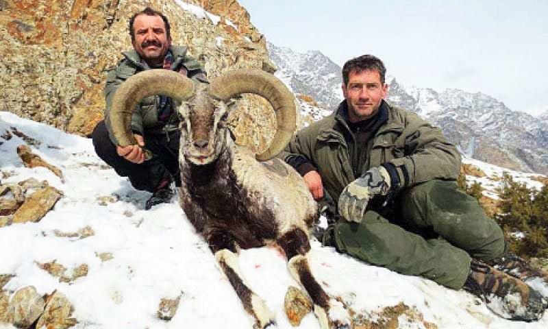 psychology behind hunting