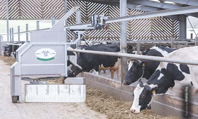 A Modern Dairy Farm With Difference