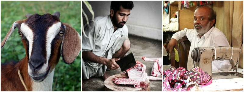 The effects of Bakra Eid are felt a week before the horror celebrations begin - Photos courtesy globalmeatnews.com/Mustafa Hussain Photography/Manal Khan