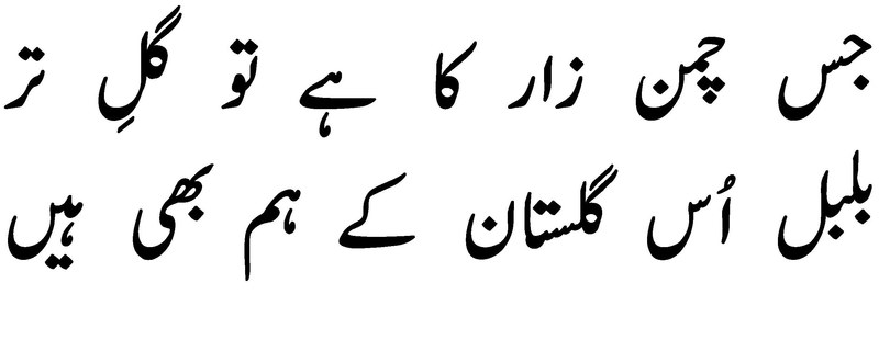 Column The Bulbul In Urdu S Garden Magazines Dawn Com