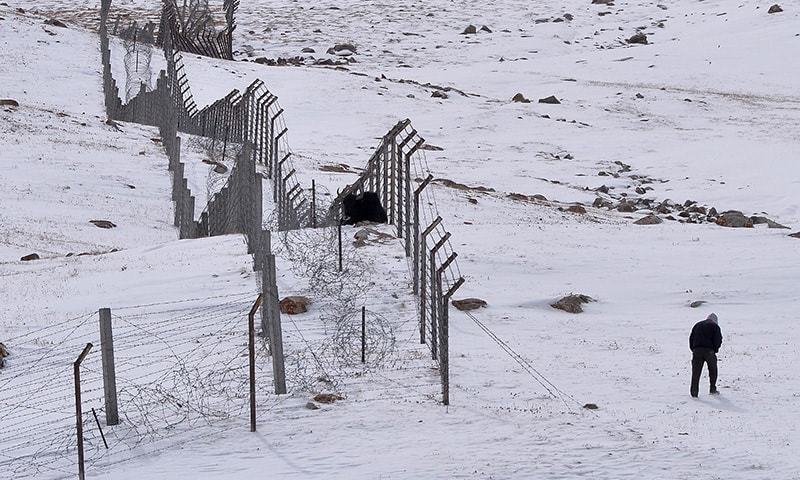 In this photograph taken on September 29, 2015, a tourist walks past a bull trapped in a fence at the Pak-China Khunjerab Pass, the world's highest paved border crossing at 4,600 metres above sea level.— AFP