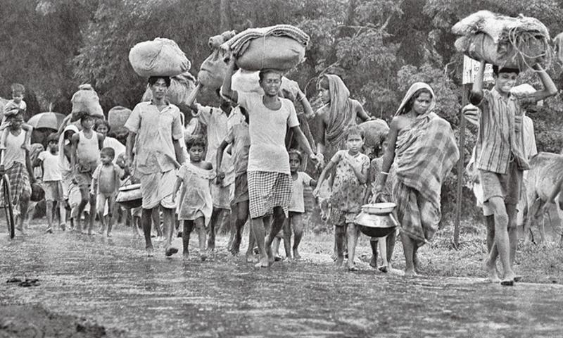 1971 war: Witness to history - Herald