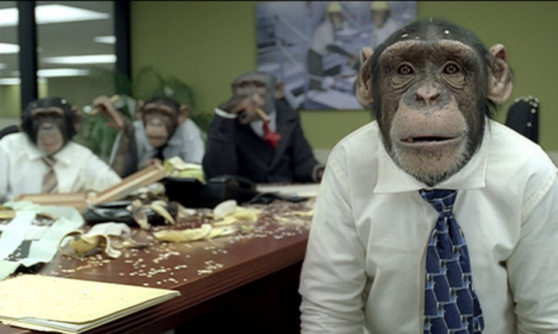 Hiring monkeys