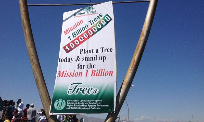 KP govt has announced to plant one billion trees in the province. —Photo courtesy PTI