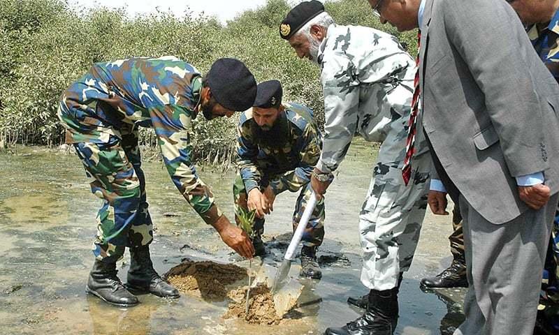 Admiral Muhammad Zakaullah plants a mangrove. —APP
