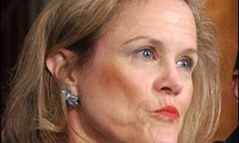 Veteran US diplomat decries FBI investigation against her