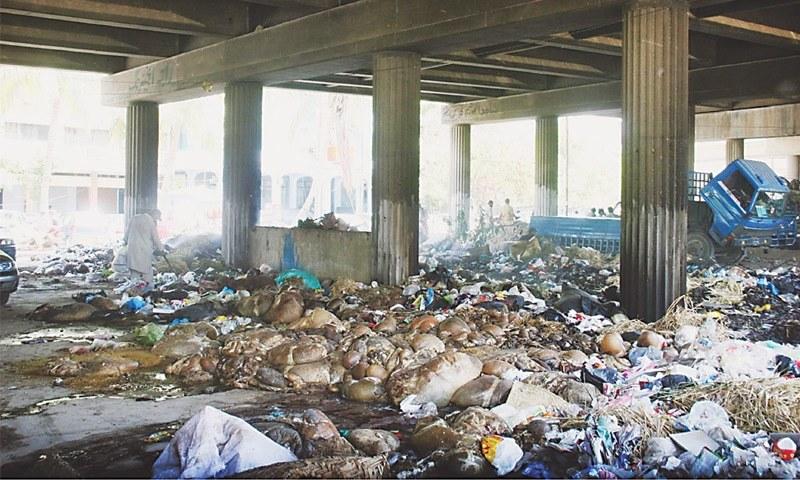 کراچی میں بلوچ کالونی پل کے نیچے جانوروں کی آلائشیں پڑی ہیں۔ — فوٹو آن لائن