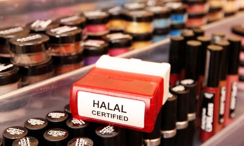 Colour me halal - Trends - Aurora