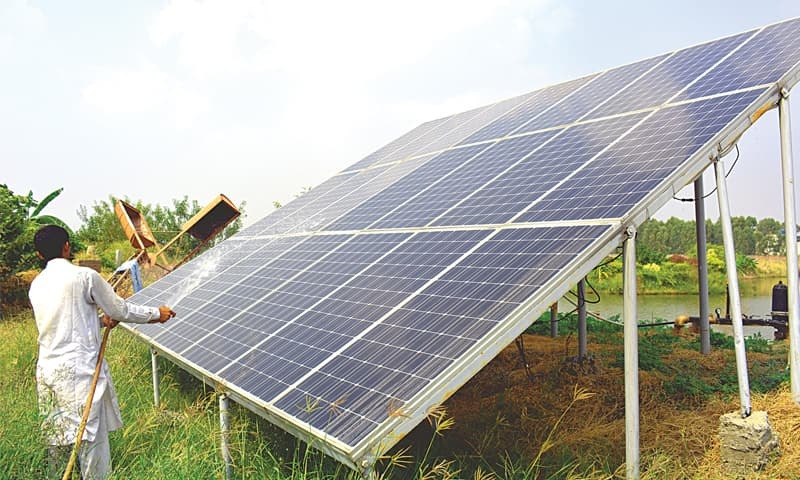 The solar panels on Malik Tariq's 21-acre farm