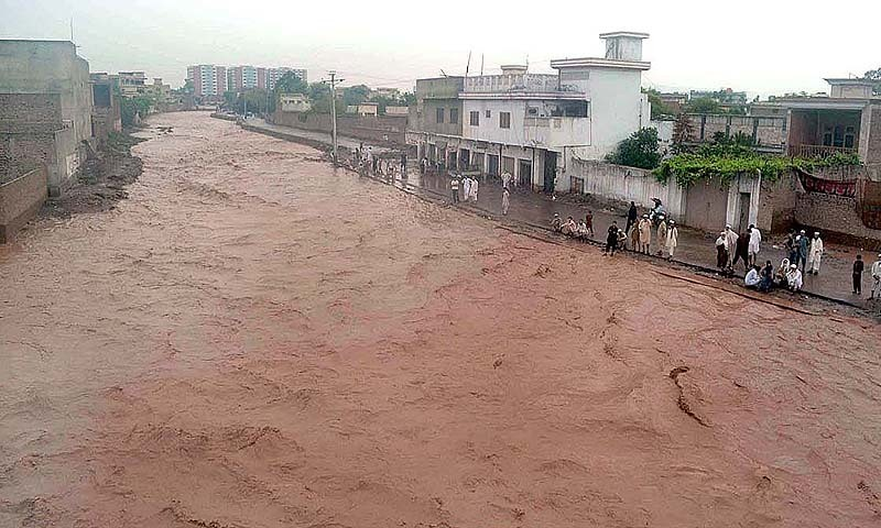 81 killed in rain-related incidents in 22 days: NDMA