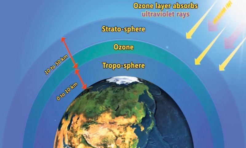 The importance of the ozone layer in sustaining life