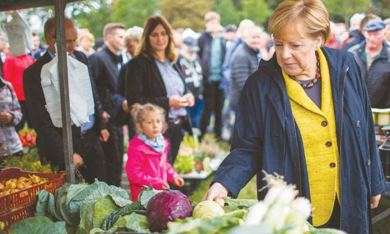 (left) German Chancellor Angela Merkel inspects vegetables at a harvest festival as she tours the city of Lauterbach on the Baltic Island of Ruegen. (right) Martin Schulz (centre), leader of Germany's Social Democratic Party and candidate for Chancellor, and vice-president of the Bundestag (lower house of parliament) Ulla Schmidt (left) hold a present as Schulz wife Inge Schulz (right) looks on during an electoral meeting on the eve of the general elections in Aachen, western Germany.—AFP