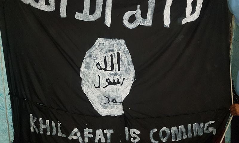 Senate committee demands detailed report on appearance of IS flag in Islamabad