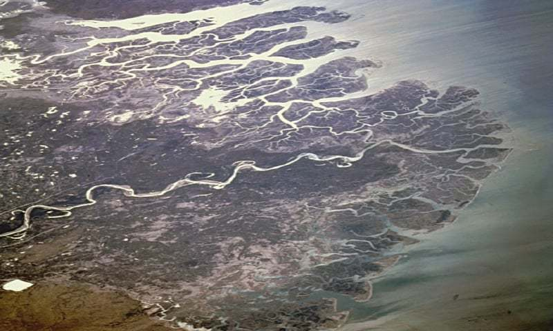 A VIEW of the Indus river delta from space.—Nasa
