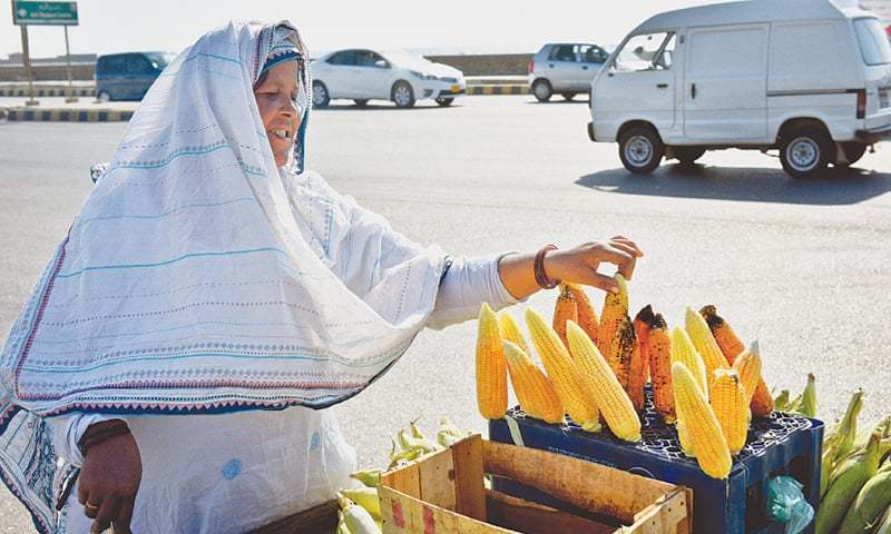 ROASTED corn-on-the-cob vendor Manzoora Mai sells the snack from morning till evening at Abdul Sattar Edhi Avenue.—Fahim Siddiqi / White Star