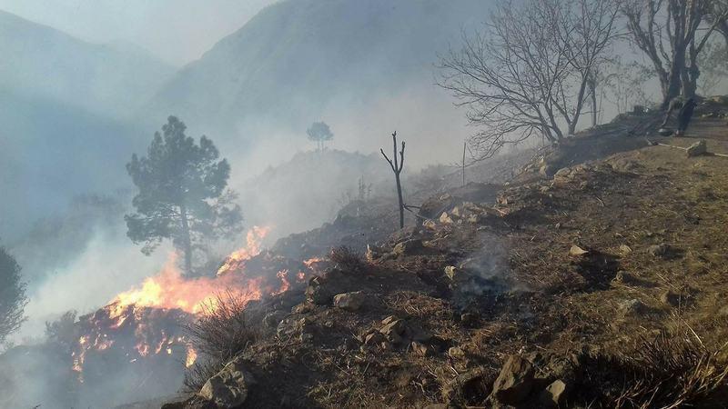 ضلع شانگلہ کے جنگلات میں آگ تین روز قبل لگی تھی—فوٹو:عمر باچا