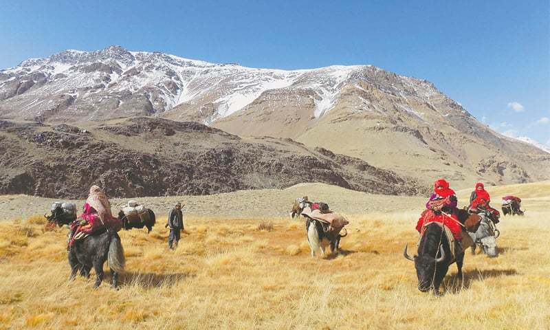 KYRGYZ nomad families travel on yaks in the Wakhan Corridor in Afghanistan in this file picture taken on Oct 7, 2017.—AFP