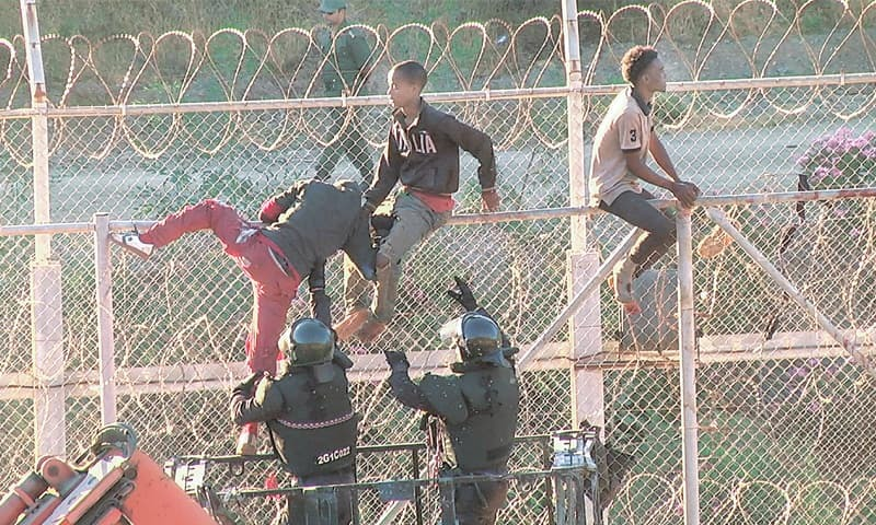 Ceuta (Spain): This still video image shows African migrants climbing the border from Morocco to Spain's North African enclave of Ceuta on Thursday.—Reuters