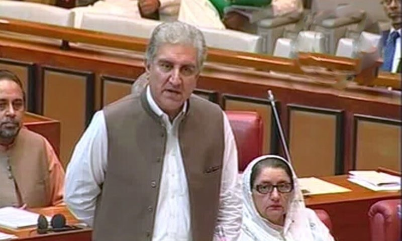 Foreign Minister Shah Mehmood Qureshi speaks in the Senate on Tuesday. — DawnNewsTV