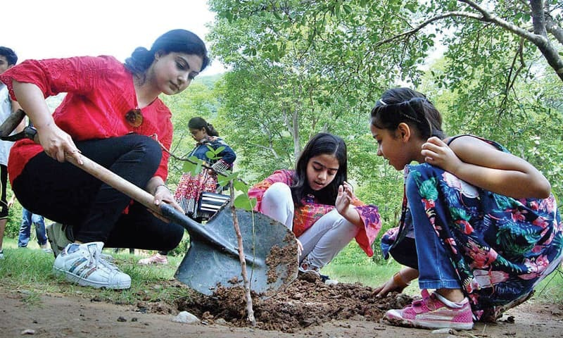 A family plants a sapling on Trail 5 in connection with the tree plantation drive in Islamabad on Sunday. — APP