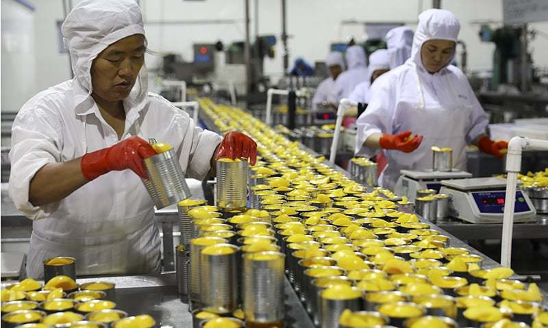 Workers pack tinned peaches for export at a fruits processor in Huaibei city in central China's Anhui province. — AP