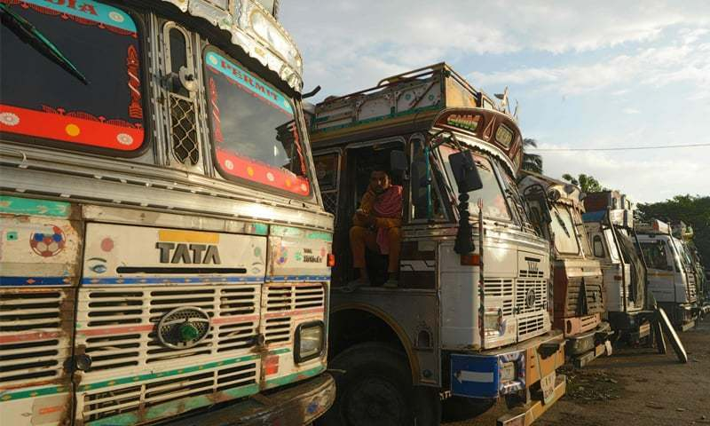 Monkey Takes The Wheel Of Indian Bus…Driver Suspended