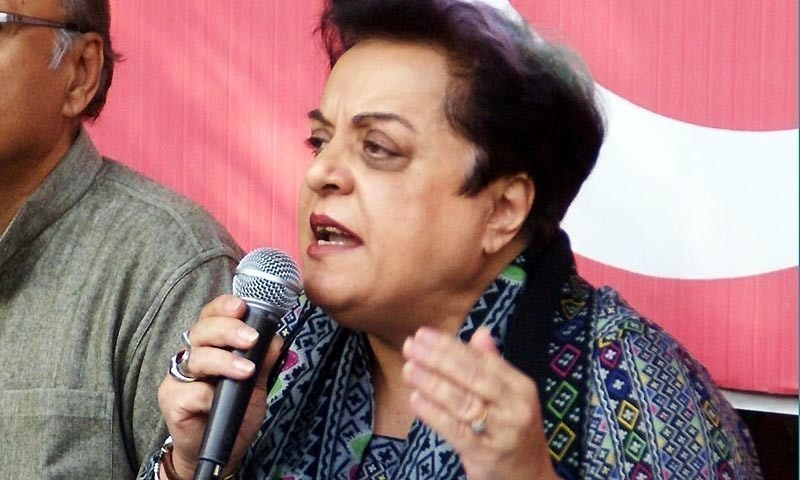Shireen Mazari says her ministry has also concluded three policies and research studies on critical matters. ─ File photo