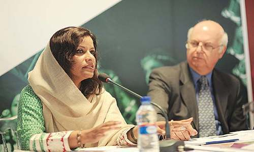 Nafisa Shah says financial affairs and contracts of the KP govt during last five years must also be probed. — File