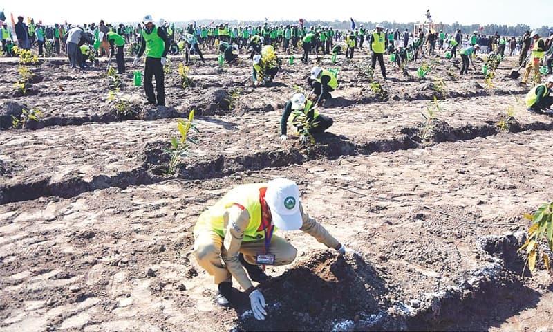 HEAD BALLOKI: Schoolchildren plant saplings in connection with the 10 billion trees tsunami project at Balloki Nature Reserve Project on Saturday.—APP