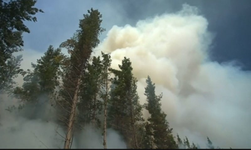 نیوزی لینڈ میں اس طرح کی آگ غیرمعمولی ہے—فوٹو:اسکرین گریب