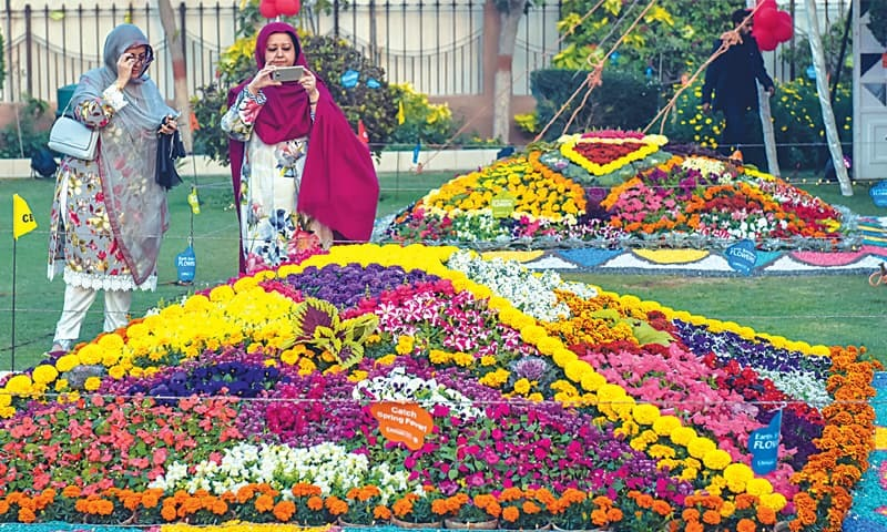 A VISITOR takes a picture of a floral arrangement at CBC's flower show which opened at Bukhari Park on Thursday.—Fahim Siddiqi/White Star
