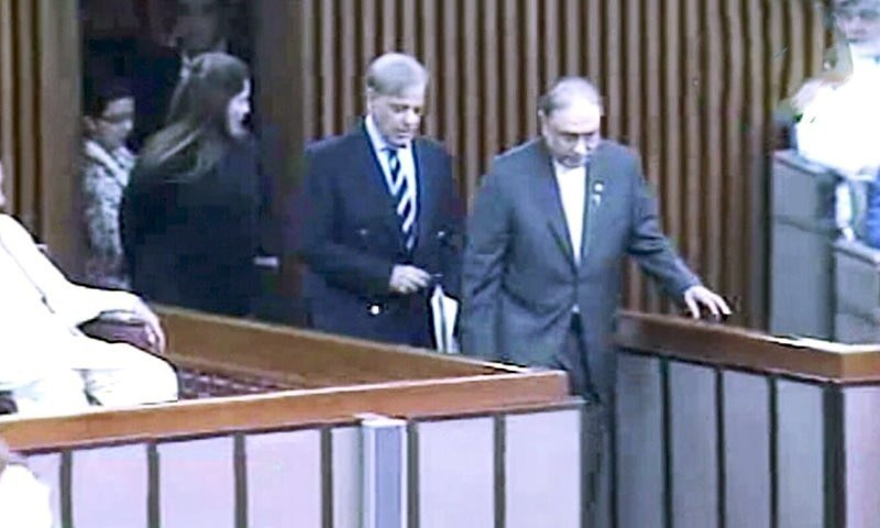 A file photo of Shahbaz Sharif and Asif Ali Zardari walking together in the parliament.