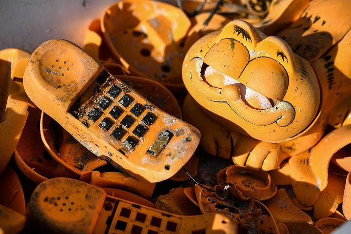 Garfield phones calling: Mystery of kitty litter on beach finally solved