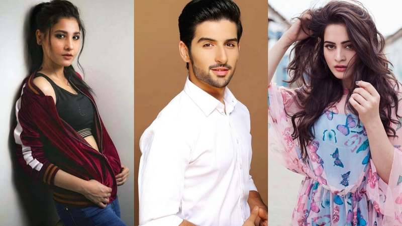 Even Minal and Aiman Khan aren't too happy with Hina...