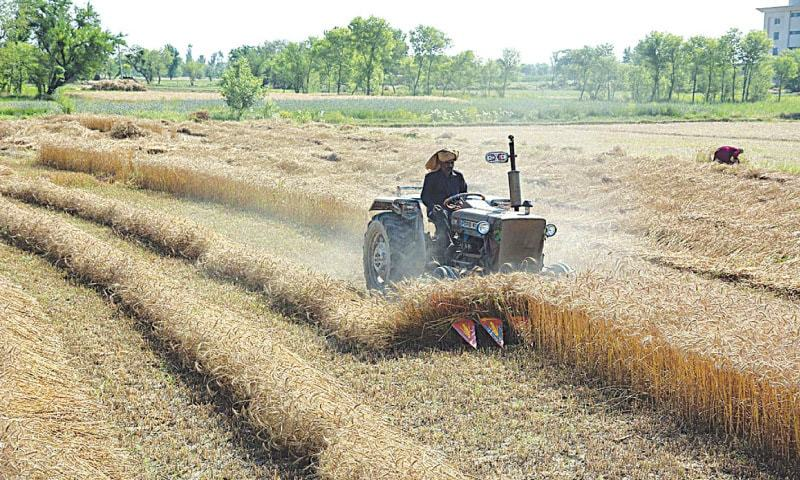 ECC okays Rs50bn for agriculture sector