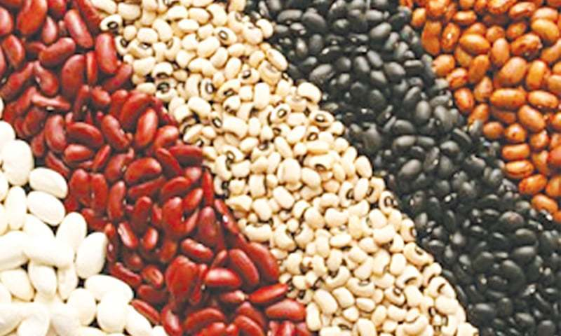 Ethiopia seeks extension in waiver to export red beans
